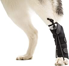 Best dog knuckling brace Reviews