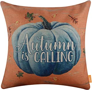 LINKWELL Farmhouse Fall Pillow Cover 18x18 inch Decorative Cushion Case Accent Home Decoration Vintage Blue Pumpkin CC1655