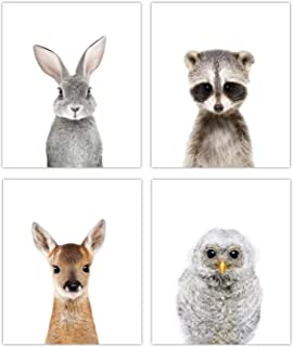 Designs by Maria Inc. Woodland Baby Animals Nursery Decor Art - Set of 4 (Unframed) Wall Prints (8x10) (Option 2)