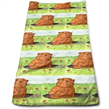 Groundhog Day Out Christmas Kitchen Towels - Dish Cloth - Machine Washable Cotton Kitchen Dishcloths,Dish Towel & Tea Towels for Drying,Cleaning,Cooking,Baking,Mothers Day Birthday