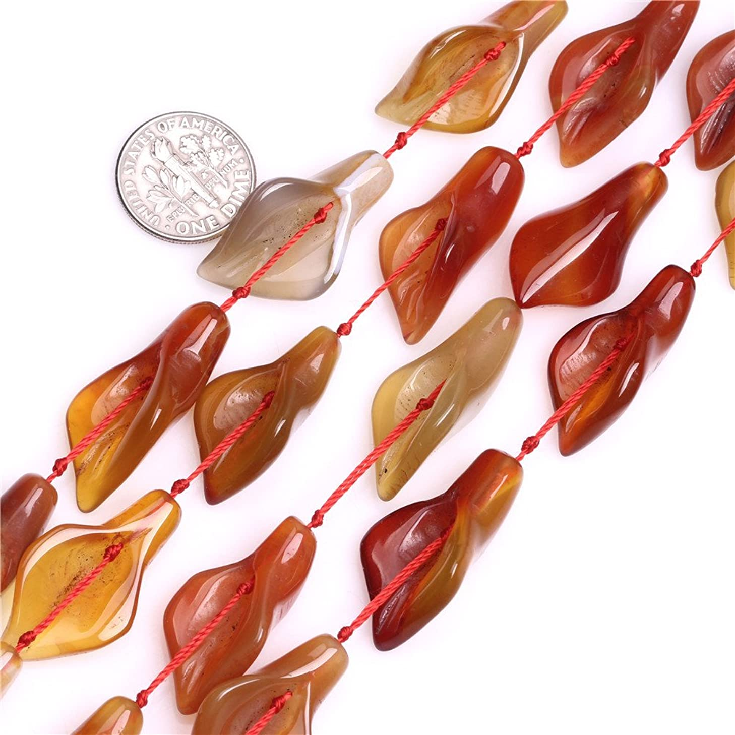 Red Carnelian Beads for Jewelry Making Natural Gemstone Semi Precious 14x28mm Calla Lily Flower Shape 13 Pcs JOE FOREMAN
