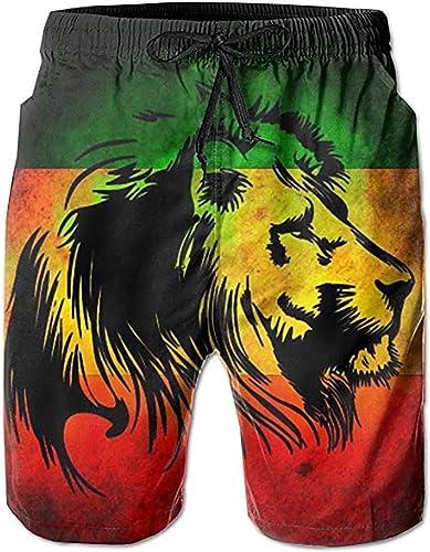 WWT Rainbow Horse Mens Fashion Swim Trunks with Mesh Lining//Side Pockets