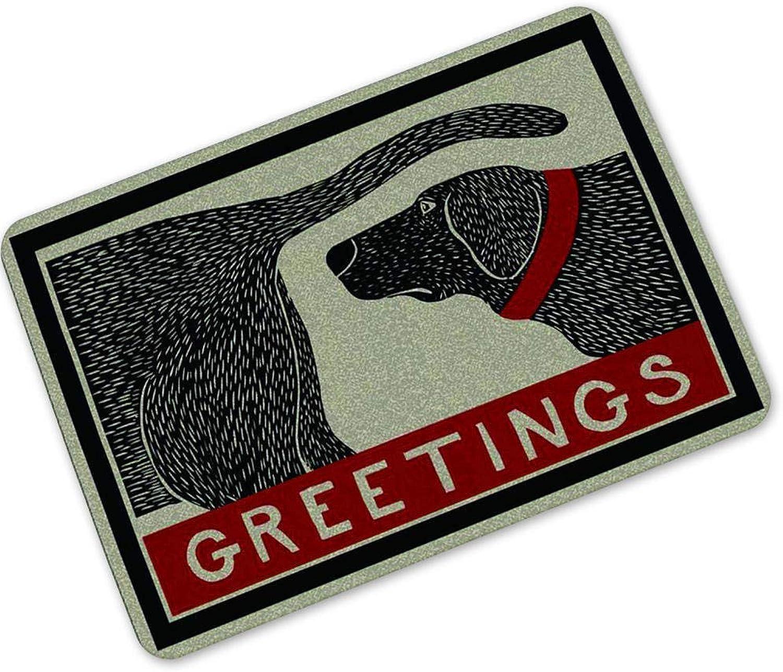 Honana 40x60cm Creative Letter Mat Entrance Door Mats Trap Printed Non-Slip Car Floor Mat Carpet