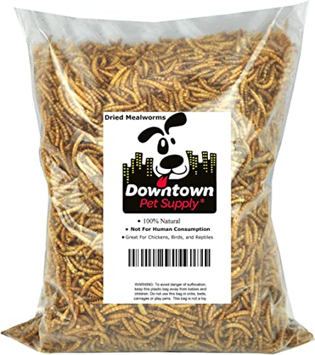 Downtown Pet Supply Dried Mealworms 100% Natural Treats for Wild Birds, Chickens, Reptiles, Fish - Food for Birds, Tu...