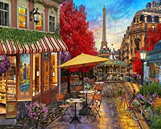 DIY Acrylic Paint by Numbers Kits for Adults Kids Painting by Number On Canvas Birthday Wedding Christmas Holiday Present,20x16Inch Paris Street Afternoon