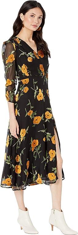 Orange Blossom Floral