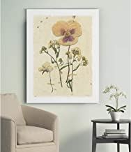 Renditions Gallery Pressed Morning Glory