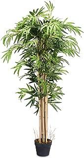 SAFEPLUS Artificial Bamboo Tree for Indoor Outdoor(5ft)