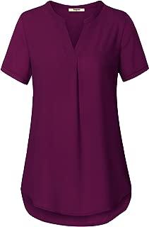 Women's V Neck Short Sleeve Curved Hem Sheer Chiffon Blouse Shirts Tops