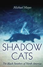 Shadow Cats: The Black Panthers of North America
