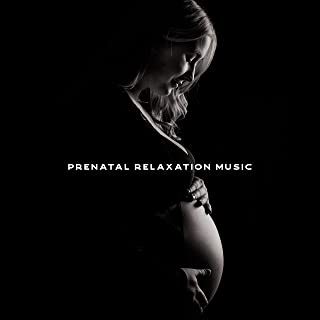 Best pregnancy songs for unborn baby Reviews
