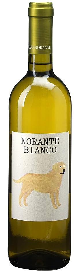 持つ対応バランスのとれたノランテ ビアンコ [ 2016 白ワイン 辛口 イタリア 750ml ]