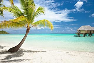 Palm Tree and Huts on Tropical Beach Photo Art Print Cool Huge Large Giant Poster Art 54x36