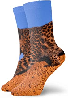Calcetines men/women Fun Dress Socks -Sphynx Cat Colorful Funny Novelty Crazy Socks Spotted Leopard5