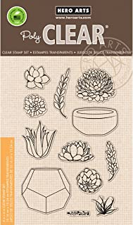 Hero Arts CL839 Clear Stamps, Stamp Your Own Succulents