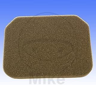 Athena Parts S410510200010 Air Filter (SUZUKI AN BURGMAN 400)