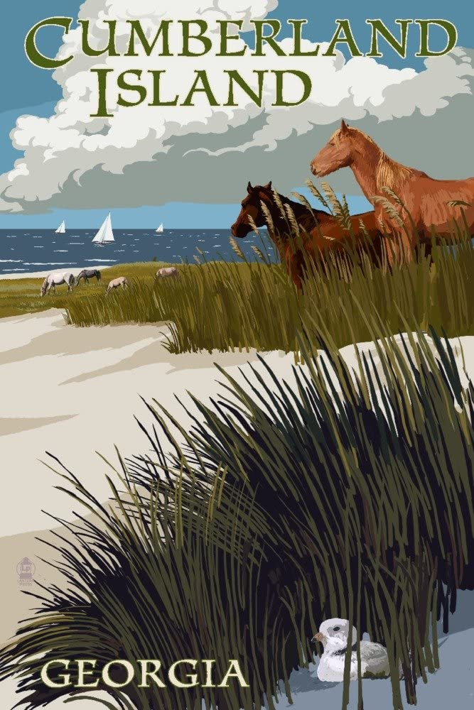 Cumberland Island Long Beach Mall Georgia - Horses Boats and 36x54 Colorado Springs Mall Dunes with