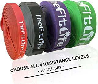 TheFitLife Resistance Pull Up Bands - Pull-Up Assist Exercise Bands, Long Workout Loop Bands for Body Stretching, Powerlifting, Fitness Training, Bonus Carrying Bag and Workout Guide - Full Set