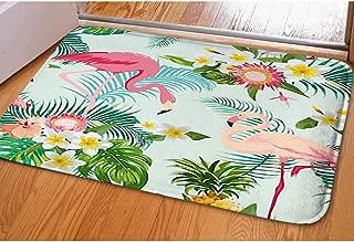 Door Mat Indoor Rugs Living Room Carpets Bathroom WC Home Decor Rug,Tropical Flowers Birds Background Vintage,Bedroom Floor Mats