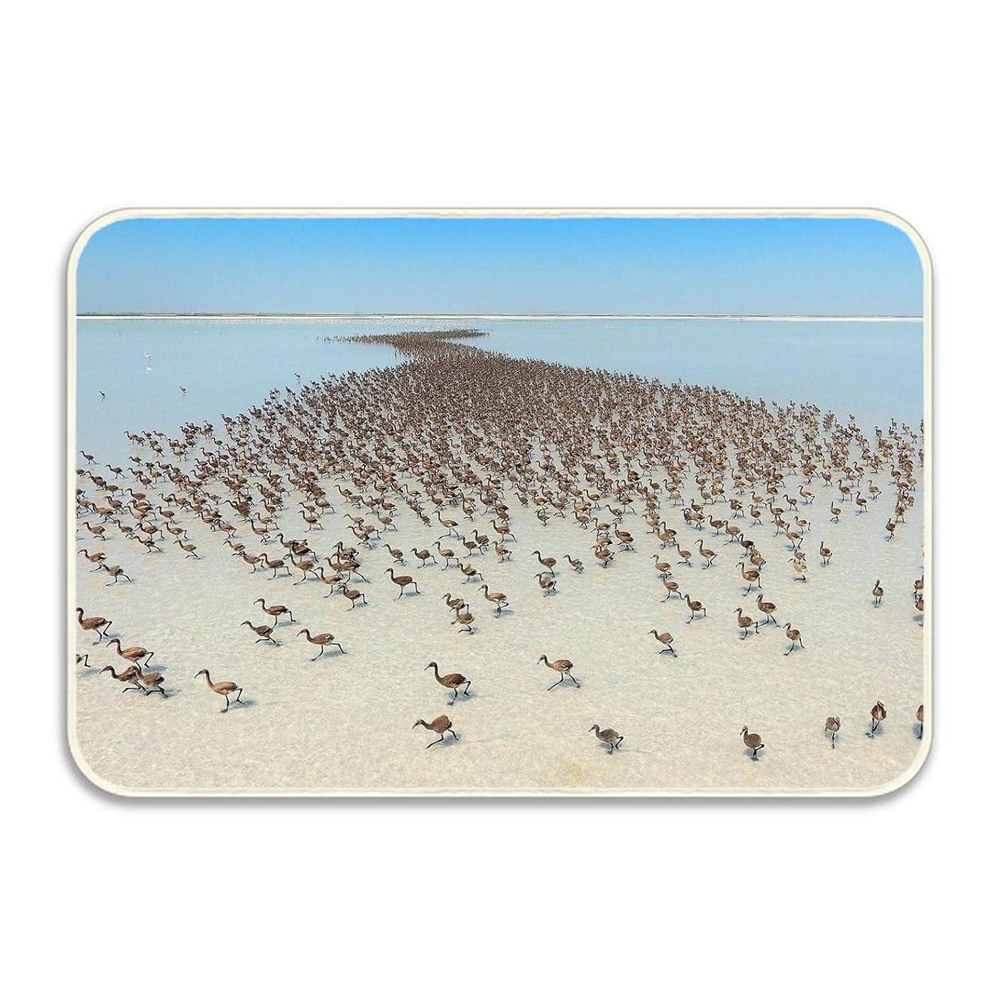 宇宙魅力ワゴンマット 玄関マット ふわっと優しい踏み心地のアウトドアマット 約40×60cm 鳥ビーチ海空動物 エントランス ドア ガーデニング ガーデン おしゃれ かわいい 土間 泥落とし ナチュラル 外 屋外 フロッグ