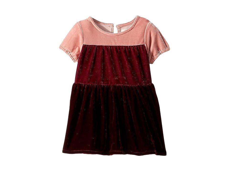 PEEK Khristene Dress (Infant) (Pink) Girl