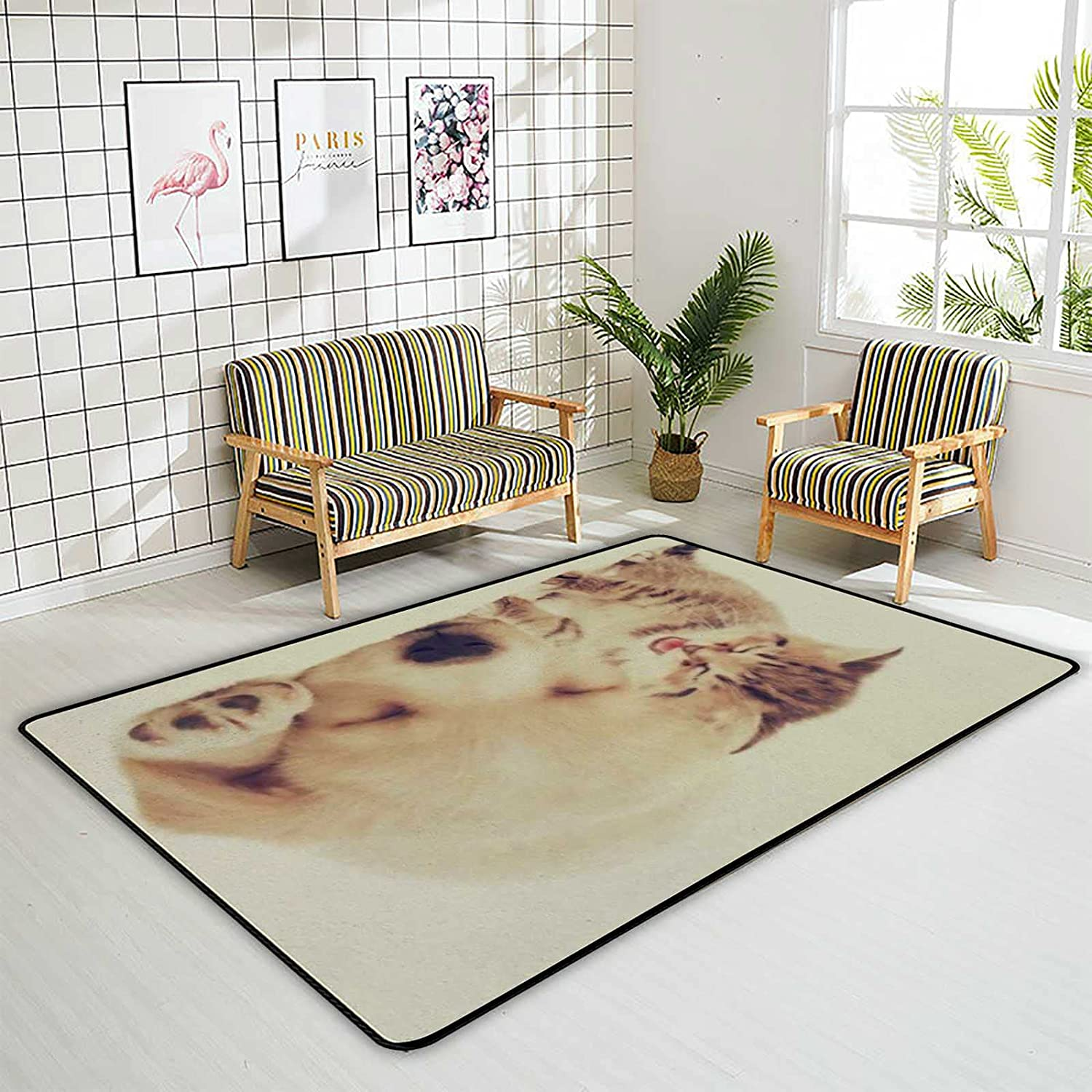 Kuizee Area Rug Cute Baby Cat OFFicial Rectangle Oversize Dog All items in the store Doorm Sweet