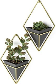 Umbra Trigg Hanging Planter Wall Decor Set, for Displaying Small Plants, Pens and Pencils, Makeup Accessories, Black/Brass