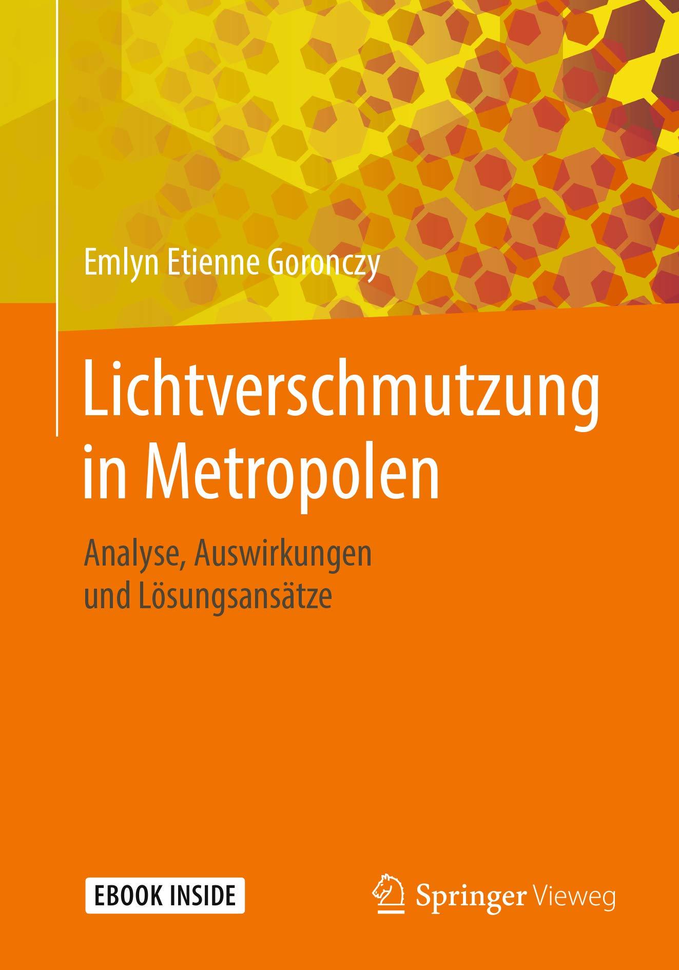 Lichtverschmutzung in Metropolen: Analyse, Auswirkungen und Lösungsansätze (German Edition)
