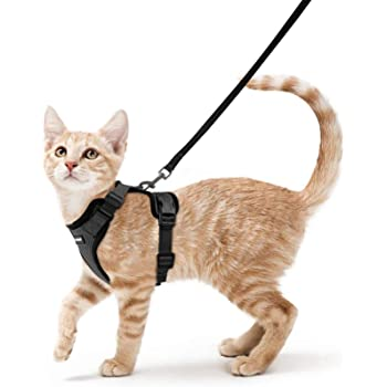 """rabbitgoo Cat Harness and Leash for Walking, Escape Proof Soft Adjustable Vest Harnesses for Cats, Easy Control Breathable Reflective Strips Jacket, Black, XS (Chest: Chest: 13.5""""-16"""")"""