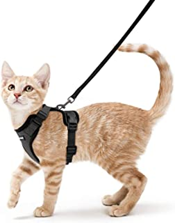 Cat Harness and Leash Set for Walking, Escape Proof with 59 Inches Leash - Adjustable Soft Vest Harnesses for Small Medium...