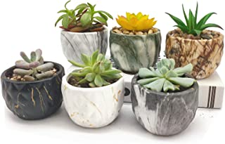Succulent Pots 3 Inch Ceramic Plants Cactus Flower Bonsai Planter Modern Style Container with Drainage Hole, Set of 6