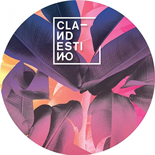 Wonder (feat. Private Agenda) by Clandestino on Amazon Music ...
