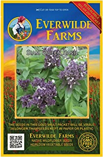 Everwilde Farms - 500 Siam Queen Basil Herb Seeds - Gold Vault Jumbo Seed Packet