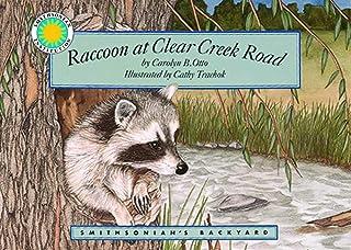 Raccoon at Clear Creek Road - a Smithsonian's Backyard Book