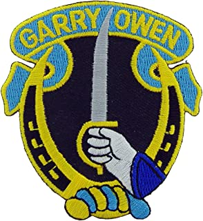 United States Army 7th Armored Cavalry Regiment Division Patch, Full Color, with Iron-On Adhesive