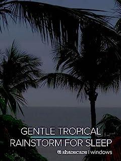 Gentle Tropical Rainstorm for Sleep 9 Hours