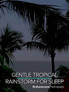 Gentle Tropical Rainstorm for Sleep 9 Hours