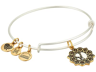 Alex and Ani Two-Tone Zodiac Bangle (Pisces) Bracelet