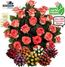 Premium Fresh Flowers for Delivery, 25 Huge & Fragrant Red White Roses Bouquet with 2 Flower Food Packets, No Vase