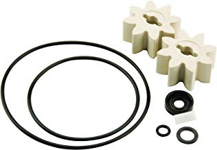 GPI Overhaul Kit (For EZ-8)Incl. Motor Shaft Key, 2 Gears, and Replacement Seals - 13750005