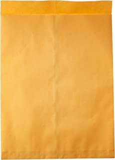 Quality Park Jumbo Envelopes, Plain, 28 lbs, 17 x 22 Inches, 25 per Box, Kraft (QUA42356)