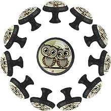 """12 Pack Ronde Keukenkast Knoppen Trekt (1-37/100"""" diameter) - Twee Leuke Cartoon Uilen - Dressoir Lade/Deur Hardware - DIY..."""