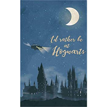 BALDAU PRINTS M9 300 GSM Bamboo Gloss Laminated Harry Potter Poster for Room (Multicolour, 12X18 Inch)