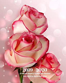 2019 - 2020 | 18 Month Weekly & Monthly Planner July 2019 to December 2020: Red Roses Flowers Gardening Vol 5 Monthly Calendar with U.S./UK/ ... Holidays– Calendar in Review/Notes 8 x 10 in.