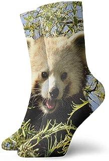 tyui7, Cute Red Panda Calcetines de compresión antideslizantes Cosy Athletic 30cm Crew Calcetines para hombres, mujeres, niños