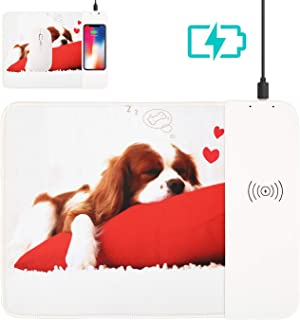 Wireless Charger, Rambg 2 in 1 Wireless Charging Pad/Mousepad for iPhone XR/XS/XS Max/X/8/8 Plus; Samsung Galaxy S10/S10+ S9/S9+/ S8/S8+/Note 8/Note 9 & All Qi Enabled Devices [No AC Adapter]