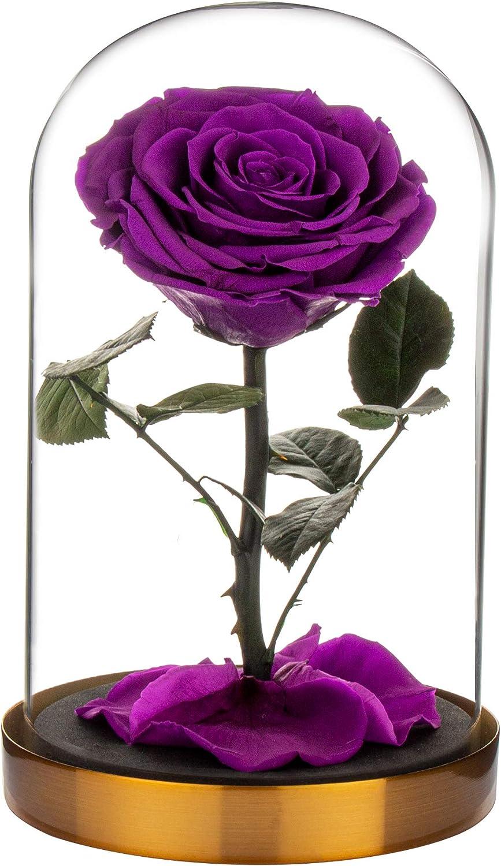 LiuMoly 今だけ限定15%OFFクーポン発行中 Eternal ブランド買うならブランドオフ Rose Made from Real for Years-Forever Last