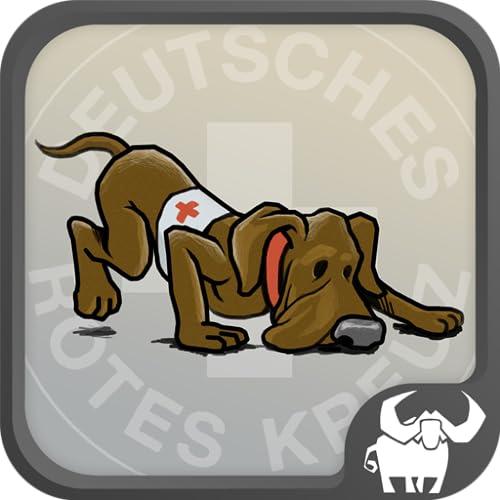 DRK Rettungshundeteam-Prüfung