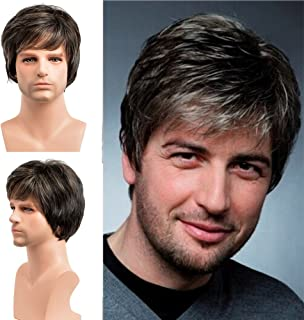 BERON Short Straight Natural Hair Replacement Synthetic Wigs for Men Come with Wig Cap (Multi Color)