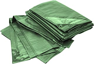 Bio Green Lona RX90-4X6-G Rainexo, 4 x 6 m, 90 g/m²,